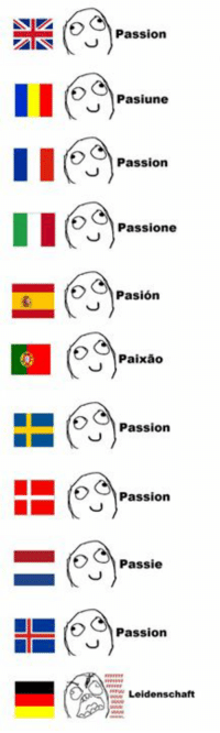 Learn German they said. German is fun they said. http://9gag.com/gag/aep3A3p?ref=fbp: Passion  Pasiune  Passion  E Passione  Pasion  Paixao  L Passion  Passion  O C Passie  Passion  Leidenschaft Learn German they said. German is fun they said. http://9gag.com/gag/aep3A3p?ref=fbp