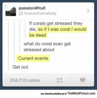 Tumblr, Blog, and Http: passion4fruit  foreverthatcatlady  If corals get stressed they  die, so if I was coral I would  be dead  what do coral even get  stressed about  Current events  Get out.  234,713 notes  you should probably go to TheMetaPicture.com srsfunny:  When Corals Get Stressed