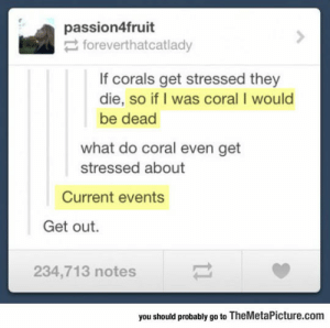 Tumblr, Blog, and Http: passion4fruit  foreverthatcatlady  If corals get stressed they  die, so if I was coral I would  be dead  what do coral even get  stressed about  Current events  Get out.  234,713 notes  you should probably go to TheMetaPicture.com srsfunny:When Corals Get Stressed
