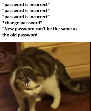 "meirl: ""password is incorrect""  ""password is incorrect""  ""password is incorrect""  *change password*  ""New password can't be the same as  the old password"" meirl"