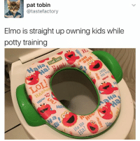 Elmo, Memes, and Game: pat tobin  atastefactory  Elmo is straight up owning kids while  potty training  HA When your pee game is not 💯