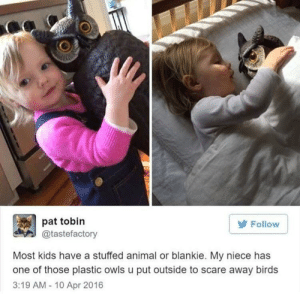 whitepeopletwitter:  Just why?!: pat tobin  Follow  @tastefactory  Most kids have a stuffed animal or blankie. My niece has  one of those plastic owls u put outside to scare away birds  3:19 AM - 10 Apr 2016 whitepeopletwitter:  Just why?!