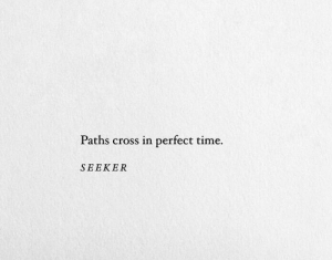 Paths: Paths cross in perfect time.  SEEKER