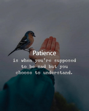 Patience, Mad, and You: Patience  is when you're supposed  to be mad but you  choose to understand.