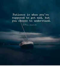 Patience: Patience is when you're  supposed to get mad, but  you choose to understand.  idealist.