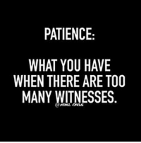 Funny, Memes, and Patience: PATIENCE  WHAT YOU HAVE  WHEN THERE ARE TO0  MANY WITNESSES #sarcastic #funny-quotes #sarcasm #funny-memes