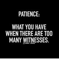 Patience: PATIENCE  WHAT YOU HAVE  WHEN THERE ARE TOO  MANY WITNESSES