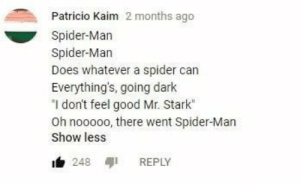 "Dank, Memes, and Spider: Patricio Kaim 2 months ago  Spider-Marn  Spider-Marn  Does whatever a spider can  Everythings, going dark  ""I don't feel good Mr. Stark""  Oh nooooo, there went Spider-Man  Show less  b 248 REPLY Avengers memefinity war by Trollalola FOLLOW HERE 4 MORE MEMES."