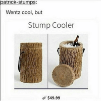 Memes, Cool, and Good: patrick-stumps:  Wentz cool, but  Stump Cooler  $49.99 so many people started listening to muse bc of me ive done a good thing