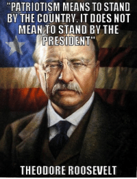 """And ... precisely.: """"PATRIOTISM MEANS TO STAND  BY THE COUNTRV. IT DOES NOT  MEAN TO STAND BY THE  PRESIDENT""""  THEODORE ROOSEVELT And ... precisely."""