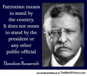 awesomesthesia:  Nicely Said, Teddy: Patriotism means  to stand by  the country  It does not mean  to stand by the  president or  any other  public official  Theodore Roosevelt  you should probably go to TheMetaPicture.com awesomesthesia:  Nicely Said, Teddy