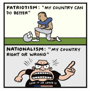 "Love, Target, and True: PATRIOTISM: ""MY coUNTRY CAN  DO BETTER""  NATIONALISM: ""my CoUNTRY  RIGHT oR WRONG""  LOVE IT OR LEAVE IT odinsblog: ""TRUE patriotism hates injustice in its own land more than anywhere else."" - Clarence Darrow"