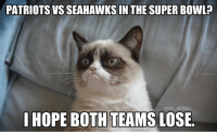 Seahawks, Super Bowls, and Seahawk: PATRIOTS VS SEAHAWKS IN THE SUPER BOWL  @NFL MEMES  I HOPE BOTH TEAMS LOSE. Haters right now..