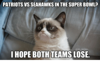 Football, Meme, and Memes: PATRIOTS VS SEAHAWKS IN THE SUPER BOWL  NFL MEMES  I HOPE BOTH TEAMSLOSE. Haters right now..