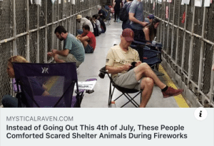 awesomacious:  Calming Companions :): PATS  i  MYSTICALRAVEN.COM  Instead of Going Out This 4th of July, These People  Comforted Scared Shelter Animals During Fireworks awesomacious:  Calming Companions :)