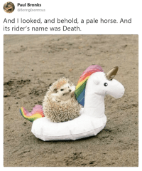 Cute, Memes, and The Worst: Paul Bronks  @BoringEnormous  And I looked, and behold, a pale horse. And  its rider's name was Death Some random, pointless memes to help you tough out the worst day of the week! #RandomMemes #FunnyMemes #Cute