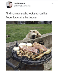 Memes, Roger, and 🤖: Paul Bronks  @BoringEnormous  Find someone who looks at you like  Roger looks at a barbecue. https://t.co/qoBPtTyE06