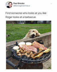 Love, Roger, and Dank Memes: Paul Bronks  @BoringEnormous  Find someone who looks at you like  Roger looks at a barbecue We love u Roger