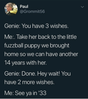 You only need one wish to be happy: Paul  @Grommit56  Genie: You have 3 wishes.  Me:. Take her back to the little  fuzzball puppy we brought  home so we can have another  14 years with her.  Genie: Done. Hey wait! You  have 2 more wishes.  Me: See ya in '33 You only need one wish to be happy