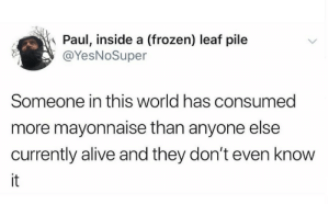 Consumed: Paul, inside a (frozen) leaf pile  @YesNoSuper  Someone in this world has consumed  more mayonnaise than anyone else  currently alive and they don't even know  it