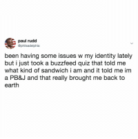 Buzzfeed, Earth, and Quiz: paul rudd  @philsadelphia  been having some issues w my identity lately  but i just took a buzzfeed quiz that told me  what kind of sandwich i am and it told me im  a PB&J and that really brought me back to  earth it all makes sense now