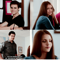 Memes, 🤖, and Paul: Paul  Wesley ig  Are we bothering you  Mr. Salvatore? Ms.Gilbert? {🐰💕} → they are so adorable! Her face in the last picture is so me tho 😂 → qotd >> do you ship Stelena? — follow my bby @iloveyoustefan 😍