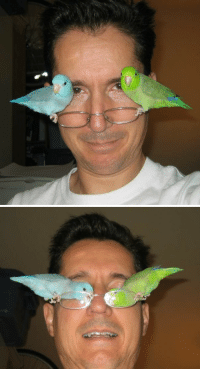 Target, Tumblr, and Blog: pavel-burrrreeeeee:  sassysaidie:  someone caption this  Winged eyeliner