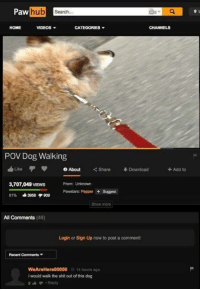 Dog Walk: Paw  hub  search,  VIDEOS  HOME  CATEGORIES  CHANNELS  Pov Dog Walking  Like O About  Share Download  Add to  3,707,049VIEWS  From: Unknown  Pawstars: Pepper Suggest  81% 3958 909  All Comments (49)  Login or Sign Up now to post a comment!  Recent Comments  WeAreHere00000 14 hours ago  i would walk the shit out of this dog