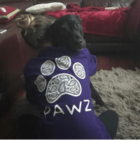 Memes, 🤖, and Submissive: PAW Thanks @iamgrizzlyy for the submission! Order now at PawzShop.com 🐶