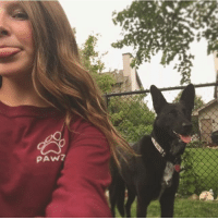 Thanks @_kendall.cl44 for the support in our maroon long sleeve 🐾: PAW? Thanks @_kendall.cl44 for the support in our maroon long sleeve 🐾