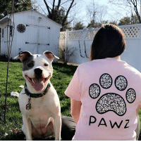 Thanks @s_caron22 for the support in our grapefruit mosaic short sleeve 🐾 order now at PawzShop.com: PAw2 Thanks @s_caron22 for the support in our grapefruit mosaic short sleeve 🐾 order now at PawzShop.com
