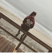 Thanks @_robin_robertson_ for the support in our Maroon tribal hoodie ☺️🐶 order now at PawzShop.com to save the dogs 🐾: PAwz Thanks @_robin_robertson_ for the support in our Maroon tribal hoodie ☺️🐶 order now at PawzShop.com to save the dogs 🐾