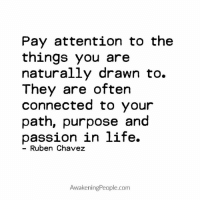 Memes, Awakenings, and 🤖: Pay attention to the  things you are  naturally drawn to.  They are often  connected to your  path, purpose and  passion in life.  Ruben Chavez  Awakening People.com Awakening People