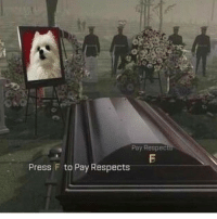 F (rip gabe the dog): Pay Respec  Press F to Pay Respects F (rip gabe the dog)
