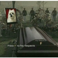 Gabe died spicymemes autism antifeminist feminism blacklivesmatter rainbowsixsiege memes autism weed: Pay Respec  Press F to Pay Respects Gabe died spicymemes autism antifeminist feminism blacklivesmatter rainbowsixsiege memes autism weed