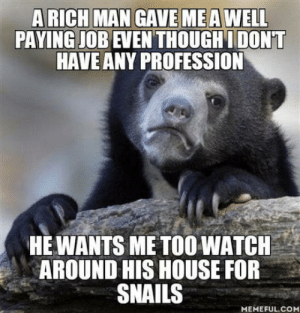 Easy money for me I guess: PAYING JOB EVEN THOUGHI DONT  HAVE ANY PROFESSION  HE WANTS ME TOOWATCH  AROUND HIS HOUSE FOR  SNAILS  MEMEFUL.COM Easy money for me I guess