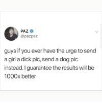 Memes, Dick, and Girl: PAZ  @pazpaz  guys if you ever have the urge to send  a girl a dick pic, send a dog pic  instead. I guarantee the results will be  1000x better I'm dying at what @memezar just posted 😂😂