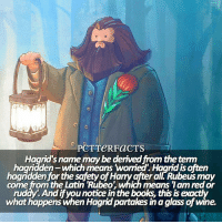 Anaconda, Books, and Facts: PCTTeRFaCTS  Hagrid's name may be derived from the temn  haariaden-which means woried. Haarid isoften  haandden for the safety of Harry after alL Rubeus may  come from the Latin Rubeo  which means Tam redor  ruddy. Andifyounotice in the books, this isexactly  what happens when Hagridpartakes inaglass of wine. ↠ 5-4-17   28 Days — I think people should be aware there's literally only so much on Pottermore. That's my source so if I run out of things (because there are a lot of extremely common things that don't need sharing) then I have to work with what I have. Also, I don't know if anyone knows but the facts arent written by me, I think people think I reword them. I don't, I copy them 100% directly from pottermore. I see so many comments often of people getting unnecessarily angry at me. Anyways this art of Hagrid is adorable. ⠀⠀⠀⠀⠀⠀⠀⠀⠀⠀⠀⠀ [Art: ArtbyKoni on tumblr] ⠀⠀⠀⠀⠀⠀⠀⠀⠀⠀⠀⠀ — Q: Favorite hobby? harrypotter pottermore