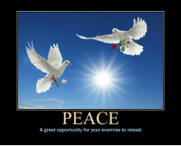 <p>Peace</p>: PEACE  A great opportunity for your enemies to reload <p>Peace</p>