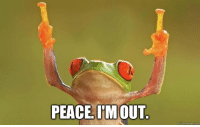 I'm out, bitches: PEACE IM OUT  quick meme com I'm out, bitches