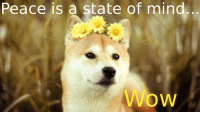 Woodshibe, 1969: Peace is a state of mind Woodshibe, 1969