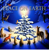 Memes, Earth, and And Funny: PEACE ON EARTH For more holiday, retro, and funny pictures go to... www.snowflakescottage.com