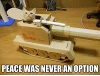Peace Was Never An Option: PEACE WAS NEVER ANOPTION
