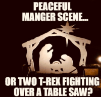 PEACEFUL  MANGER SCENE  OR TWO T-REX FIGHTING  OVER A TABLE SAW
