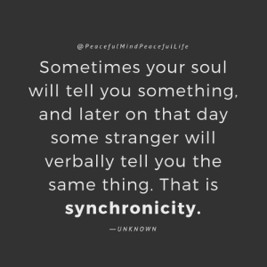 Life, Memes, and Experience: @PeacefulMindPeacefulLife  Sometimes your soul  will tell you something.  and later on that day  some stranger will  verbally tell you the  same thing. That is  synchronicity.  -UNKNO WN Every person and experience that we have in life is here to teach us something. Sometimes we can't see the lesson, or the next right step clearly so we get signs along the way. When we learn what it has for us, we then use it to walk the path we desire for life. ~xoxo Michelle & Barb