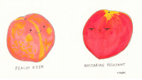 Peachy: PEACHy KEEN  NECTARINE RELUCTANT  rubyet