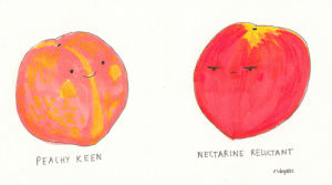 reluctant: PEACHy KEEN  NECTARINE RELUCTANT  rubyet