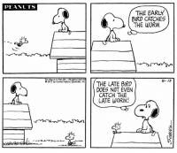 This strip was published on August 13, 1971. 🐦: PEANTS  THE EARLY  BIRD CATCHES  THE WORM  Tm, Reg U.S, Pat.Off--All rights reserved  91971 by United Feature Syndicate,Inc  8-13  THE LATE BIRD  DOES NOT EVEN  CATCH THE  LATE WORM This strip was published on August 13, 1971. 🐦