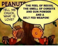 Love, Memes, and Smell: PEANU  THE FEEL OF RECOIL  TELL ME  THE SMELL OF CORDITE  AND GUNPOWDER  CHUCK,  AND A  WHAT IS  BELT FED WEAPON!  LOVE? Loved this cartoon as a kid... now I know why! Patrick James