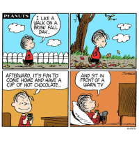 Fall is for hot chocolate and TV ☕️📺: PEANUTS  A  I LIKE WALK ON A  BRISK FALL  DAY.  AFTERWARD, IT'S FUN TO  COME HOME AND HAVE A  CUP OF HOT CHOCOLATE  AND SIT IN  FRONT OF A  WARM TV  I  PNTS Fall is for hot chocolate and TV ☕️📺